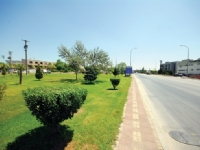 DOSAB Green Area13