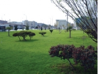 DOSAB Green Area14